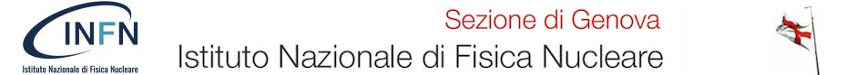 INFN Genova